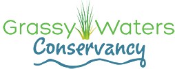 Grassy Waters Conservancy