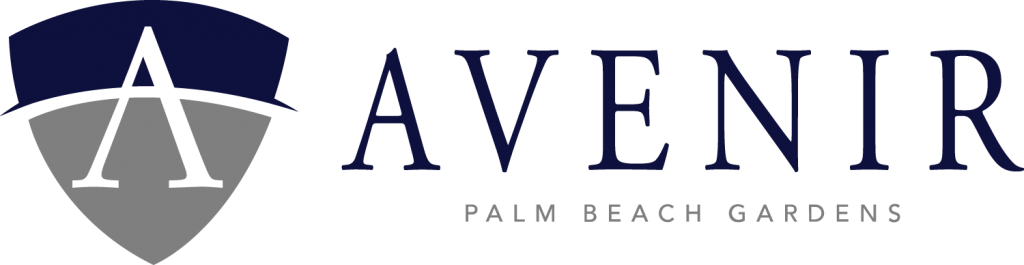 Public Outreach/Involvement in Large Scale Mixed Use Development Project in the City of Palm Beach Gardens